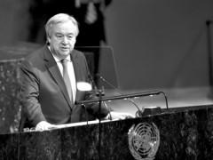 联合国秘书长呼吁国际社会协同建设和维持和平