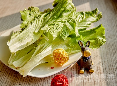 生菜怎么做好吃 常吃生菜竟有这种好处